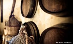 kevsteele_100831_op-wine-barrels_d3_4419